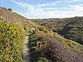 Path near Pwll-y-wrach, Moylgrove - geograph.org.uk - 1803733.jpg
