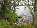 Perm, Perm Krai, Russia - panoramio (34).jpg