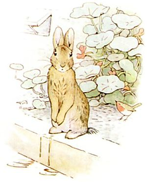 PeterRabbit19.jpg