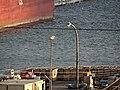 Pineglen moored in Toronto, 2014 12 31 (5).JPG - panoramio.jpg