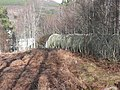 Pipeline to Tummel Bridge power station - geograph.org.uk - 751536.jpg