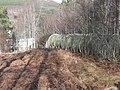 Pipeline to Tummel Bridge power station - geograph.org.uk - 751536.jpg