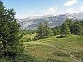 Piste de descente en VTT de la Boucle de Razis (Vars, Sainte-Marie) - panoramio.jpg