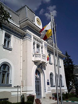 Pitesti city hall.jpg