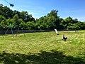 Playground - panoramio - Michael A. Orlando.jpg