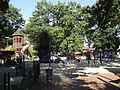 Playground Tierpark Nordhorn.jpg