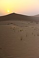 Por do sol no deserto - Sunset at the desert of Abu Dhabi (17174943589).jpg