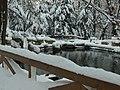 Praha Smíchov, Kinského zahrada, jezírko v zimě.JPG