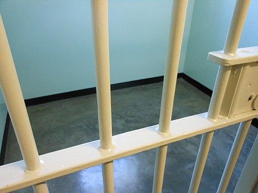 Prison Bars (5997920696)