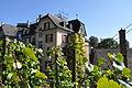 Quartier Weinegg - Impression September 2014 - Bild 9.JPG