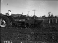 Queensland State Archives 1673 Potato digger harvesting Sebago potato crop 100120 bags to acre c1951.png