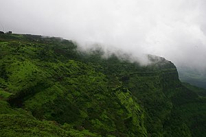 Raigad fort walls hidden in the green