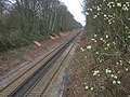 Railway between Penshurst and Leigh Stations - geograph.org.uk - 152146.jpg