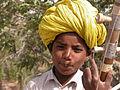 Rajasthan2105b.jpg