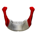 Ramus of the mandible - close up - posterior view.png