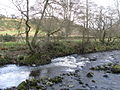Rapids on the River East Allen near Kittygreen - geograph.org.uk - 716776.jpg
