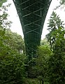 Ravenna Park Bridge 08 - rotated & colormapped.jpg