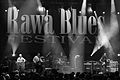 Rawa Blues Festival Wojciech Klich 009.jpg