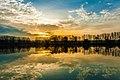 Reflections (92698507).jpeg
