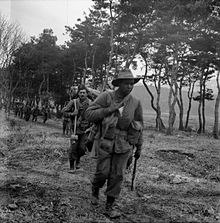 Australian soldiers move alongside a tree line in single file