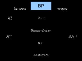 Renin–angiotensin system - Renal hormone regulation schematic