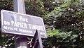 Rennes - Rue du Papier Timbré.jpg