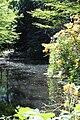 Rhododendronpark Bremen 20090513 069.JPG
