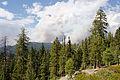 Rim Fire Yosemite August 2013 006.jpg