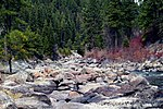 A photo of rocks along a river in Boise National Forest.