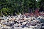 Kuva kivistä joen varrella Boisen kansallismetsässä.