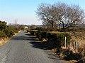 Road at Meenavoy Upper - geograph.org.uk - 1750545.jpg