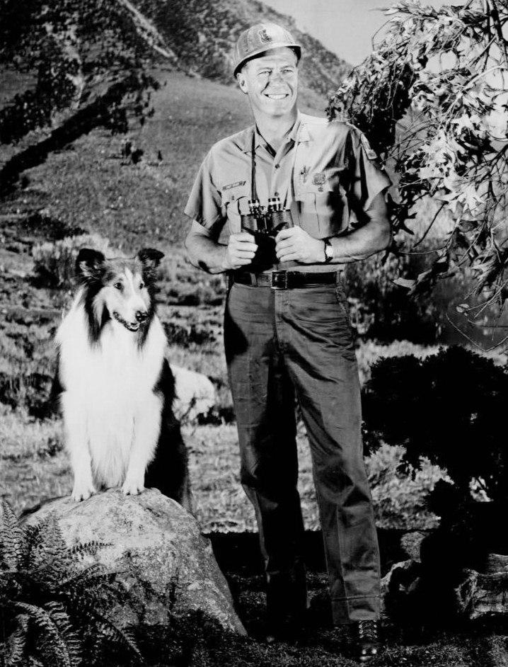 Robert Bray Lassie 1967