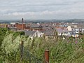 Rooftops from Bincleaves - Weymouth - geograph.org.uk - 1939977.jpg