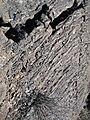 Ropy Pahoehoe Cliff (2386058117).jpg