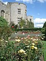 Rose garden at Chirk Castle - geograph.org.uk - 543924.jpg