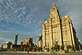 Royal Liver Building and buildings to north.jpg