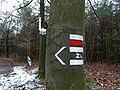 Rozcestí Červená hlína, značky.jpg