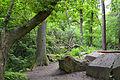 Ruine Schornstein Langes Tannen 01.jpg