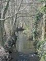 Ruisseau à Saint Pierre - panoramio.jpg