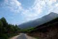 Rural roads of India Munnar Kerala Western Ghats May 2014.png