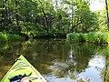 Rurzyca river (3).jpg