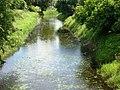 Rzeka Marycha w Sejnach - panoramio.jpg
