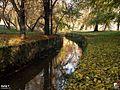 Rzeka Mleczna Radom 259215 Fotopolska-Eu.jpg