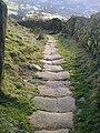 Salter Rake Gate - geograph.org.uk - 1076709.jpg