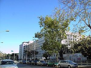 Viale Aventino - Viale Aventino and Palazzo FAO