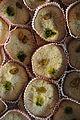 Sandesh - Kolkata 2012-01-13 8320.JPG