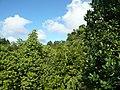 Sankt Lucia - panoramio - georama (46).jpg