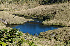 Landschaft im Horton-Plains-Nationalpark