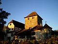 Schloss Hegi Winterthur in der Abendsonne.jpg