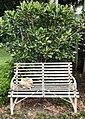 Sculpture of a rabbit on a steel bench in a garden.jpg